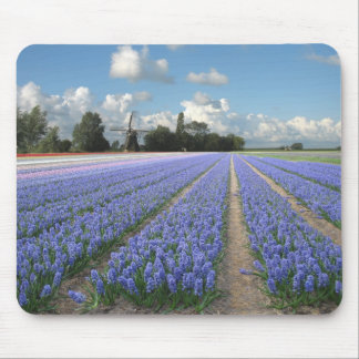 Holland Windmill Hyacinths Mouse Pad