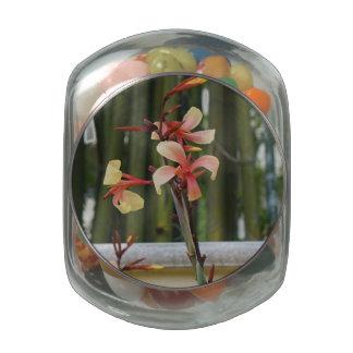 Hollis Orchid 3