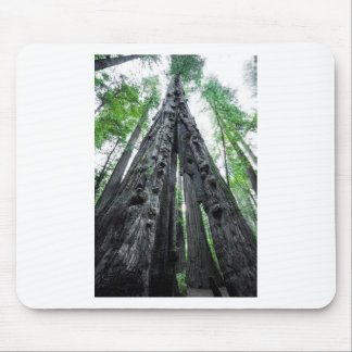 Hollow Redwood Mouse Pad