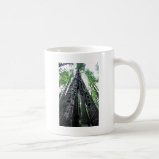 Hollow Redwood Coffee Mug