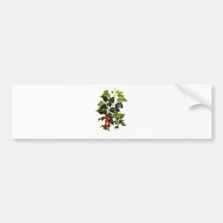 holly and ivy design Christmas Bumper Sticker