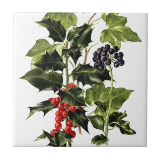 holly and ivy design Christmas Tile