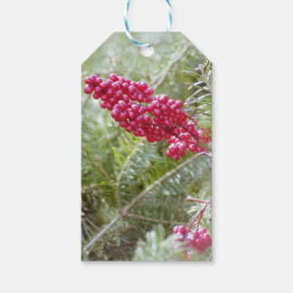 Holly Berries Wrapping Paper, Bags, & Tags Pack Of Gift Tags