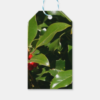 Holly Berry Christmas Wrapping Paper Pack Of Gift Tags