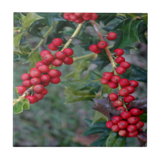 Holly berry tile
