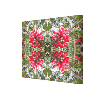 Holly Crystal Photo Fractal 2 Canvas Print
