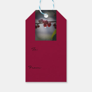 Holly in Water Droplets Gift Tags Pack Of Gift Tags
