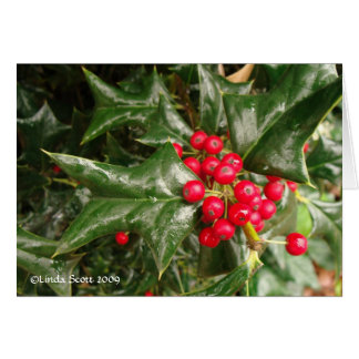 Holly Leaves and Red Berries Card