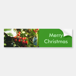 Holly leaves and red berries, Christmas Bumper Sticker