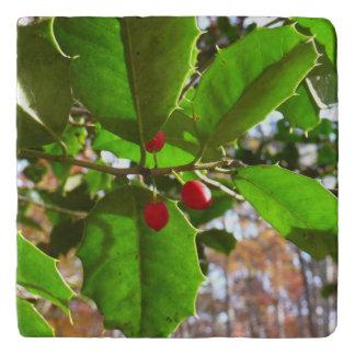 Holly Leaves II Holiday Nature Botanical Trivet