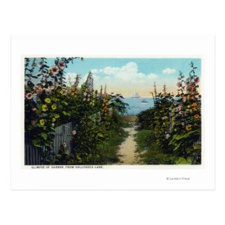Hollyhock Lane View of the Harbor Postcard
