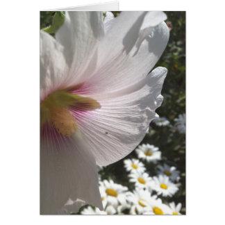 Hollyhocks and Daisies Greeting Card