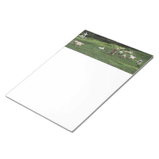 Holly's Half Dozen romp notepad