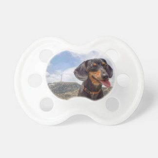 Hollywood Pacifier