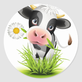 Holstein cow in grass classic round sticker
