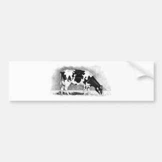 Holstein Cow: Pencil Drawing: Farm, Country Bumper Sticker