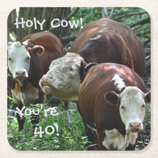 Holy Cow You're 40 Birthday Party Coasters