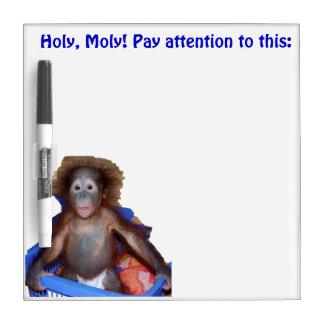 Holy Moly Pay Attention Messages Dry-Erase Board
