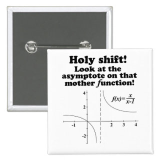 Holy Shift! Look at the asymptote Math Button Pinback Button