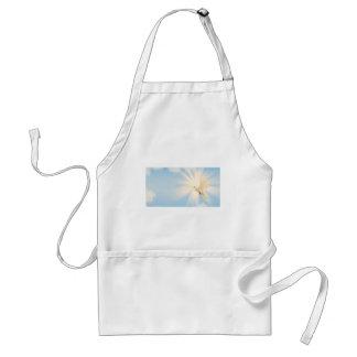 Holy spirit heavenly dove standard apron