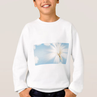 Holy spirit heavenly dove sweatshirt