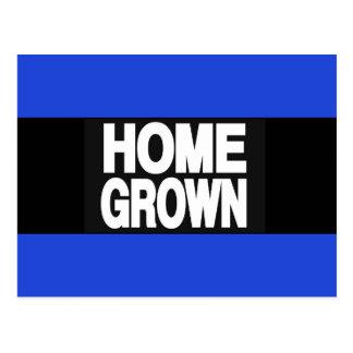 Home Grown 2 Blue Postcard