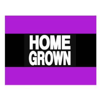 Home Grown 2 Purple Postcard