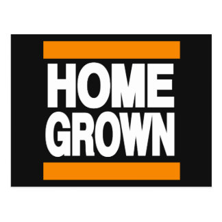 Home Grown Orange Postcard