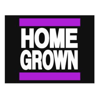 Home Grown Purple Postcard