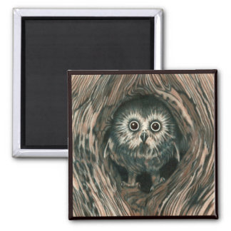 """Home in a Hole"" Owl Magnet"