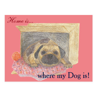 Home is, where my dog is! postcard