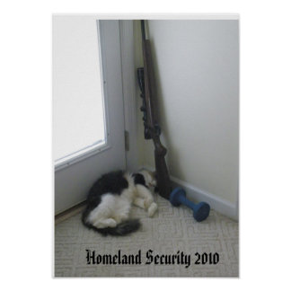 Homeland Security 2010 Poster