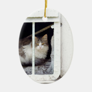 Homeless cat observes street ceramic ornament