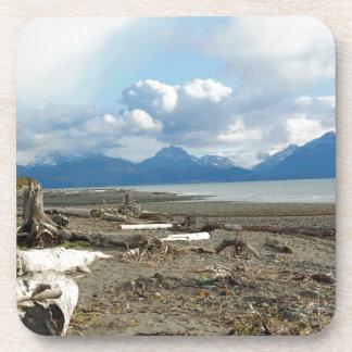 Homer Alaska Beach Coaster Set