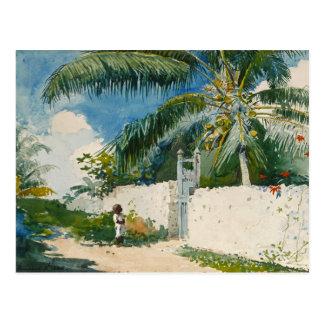 Homer Garden Nassau Vintage Tropical Watercolor Postcard