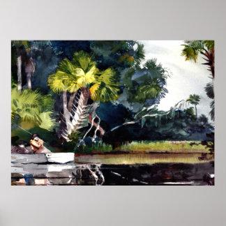 Homer - Homosassa Jungle Poster