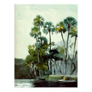 Homer - Homosassa River Postcard