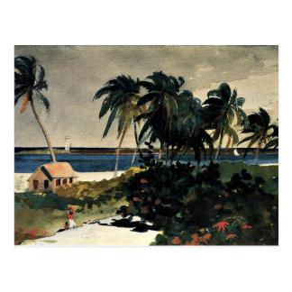 Homer - Nassau 1899 Postcard