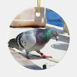 Homing Pigeon On A Yacht Ceramic Ornament