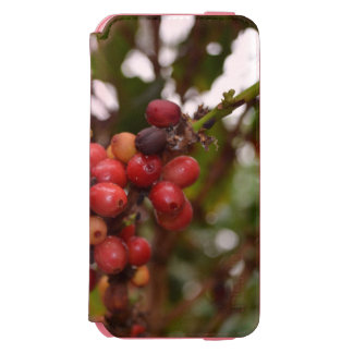 Honduras Coffee Beans Incipio Watson™ iPhone 6 Wallet Case