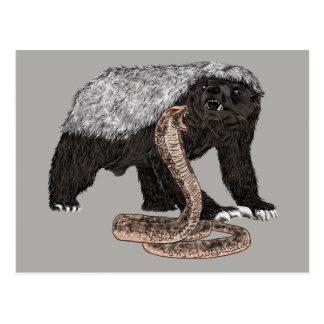 Honey Badger Faces Snake Fearless Animal Design Postcard