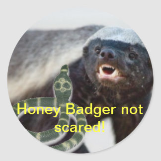 honey badger not scared classic round sticker