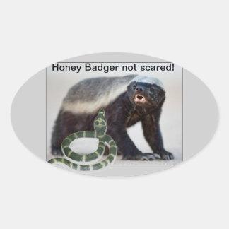 honey badger not scared oval sticker
