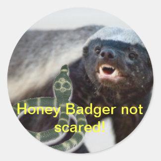 honey badger not scared round sticker
