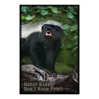 Honey Badger V2 Poster -40x60 -other sizes also