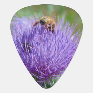 Honey Bee and Thistle Guitar Pick