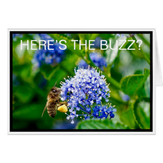 Honey Bee Here's the Buzz Greeting Card