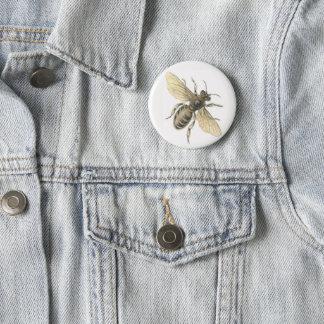 Honey Bee Illustration Vintage Design Badge 2 Inch Round Button