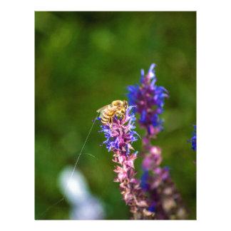 Honey Bee Letterhead Template