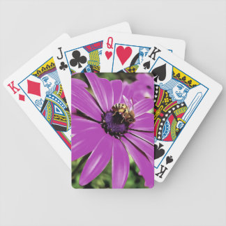 Honey Bee On a Spring Flower Bicycle Playing Cards
